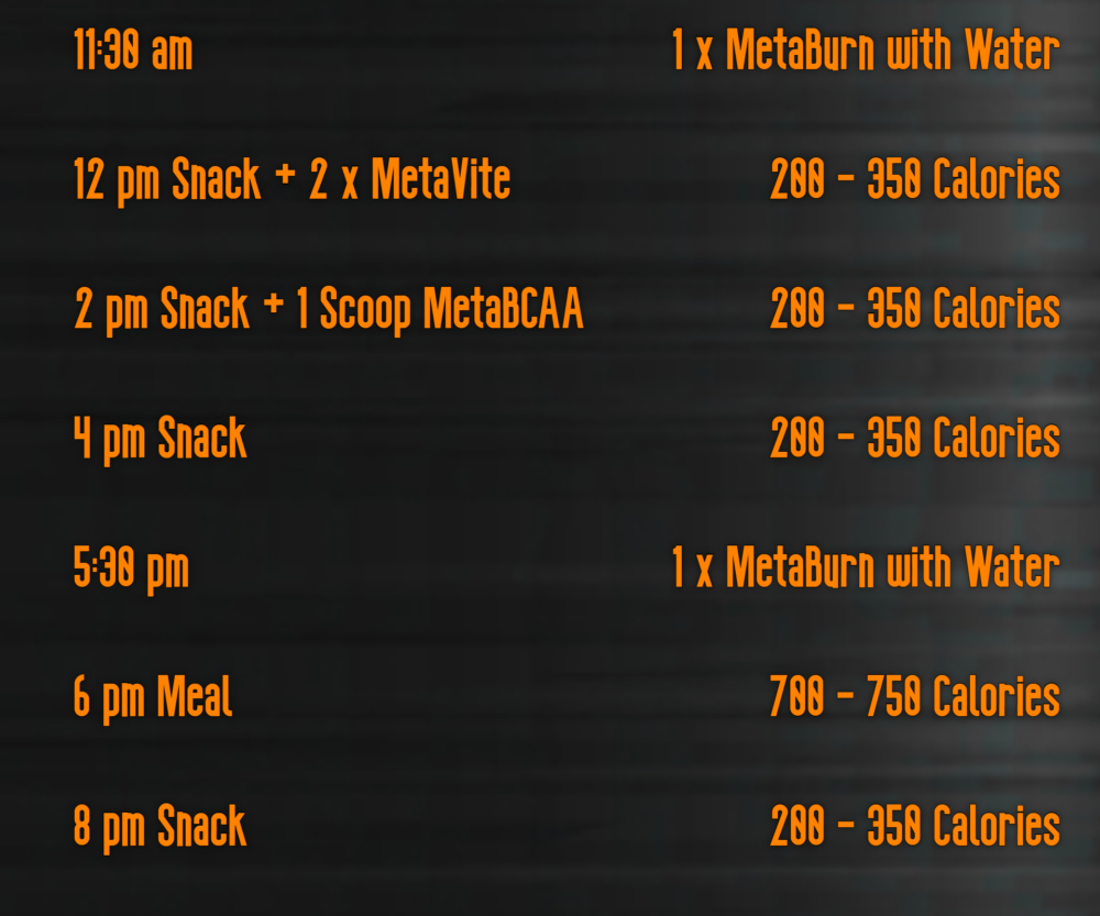MetaFire Life Daily Plan